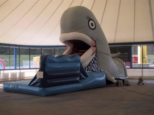 Snappy Wal interaktives Spielgerät